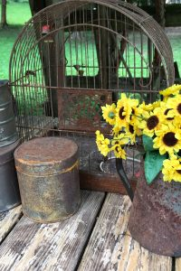 I love using rusty containers in my garden. They can hold flowers, or add a little whimsy to the garden