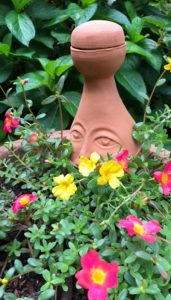 Ollas are perfect for container gardens
