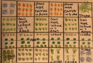 Create your planting plan using the square foot gardening method
