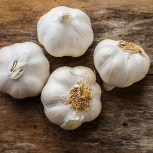 Plant garlic in the fall for a summer harvest